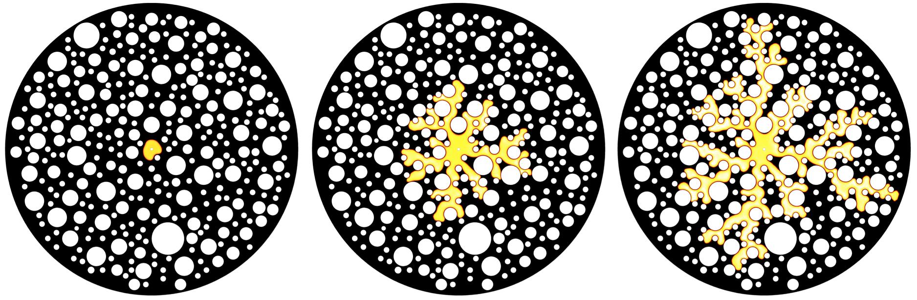 micromodel
